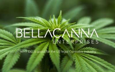 Why Diversity and Inclusion is good for the US legal Cannabis Industry